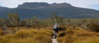 Walking on the Overland Track | Linda Murden