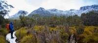 Trekker pauses to admire the diverse scenery along the trail | Great Walks of Australia