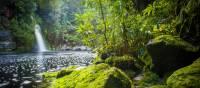 Tranquil scenes on the Franklin River | Glenn Walker